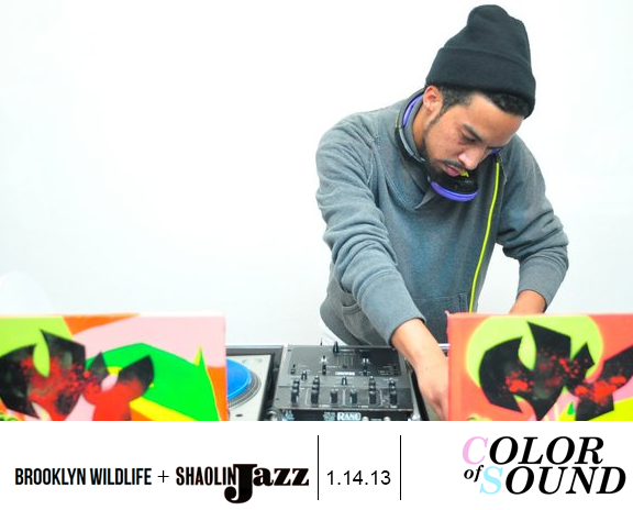 Color of Sound_nyc